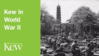 The Story of Kew Gardens in Photographs: Kew in World War II
