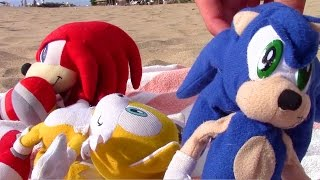 Sonic Plush Adventures-Hawaii Too
