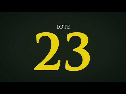 LOTE 23   CSCC  6763