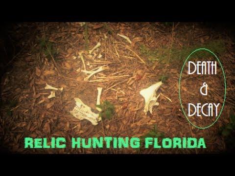 The 1800s Orange Grove | Historic Florida Metal Detecting