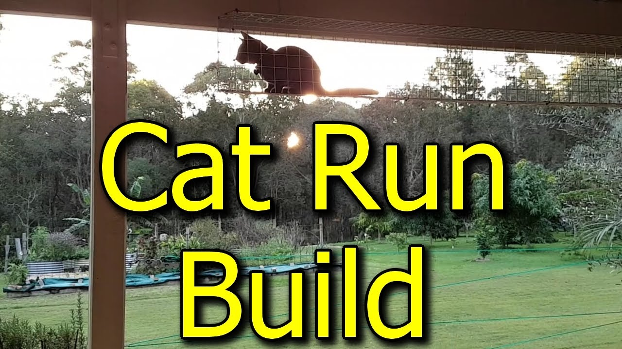 How To Build A Cat Run Enclosure What Materials We Used For Diy