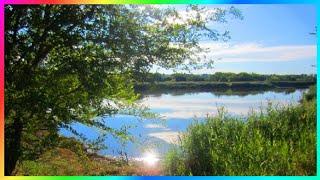 Красивая природа Видео релакс Этот прекрасный мир