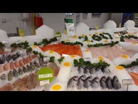 Fish Display In Abu Dhabi