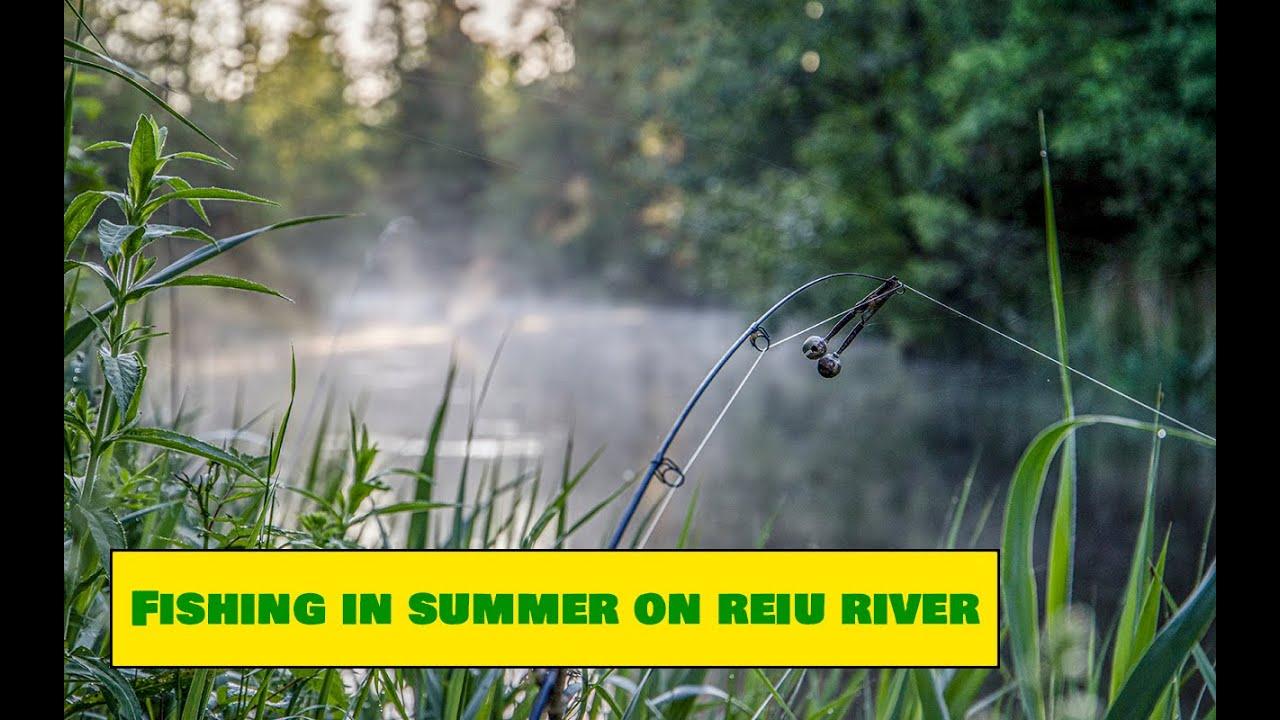 Summer Fishing on Reiu River/ Reiu jõgi kalapüük suvel - Estonian Nature