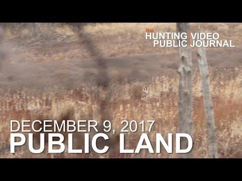 Public Land Day 38: Gun Season, Opening Day Pressure | The Hunting Public