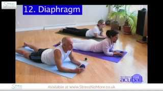 How To Relieve Diaphragm Pain With Acuball