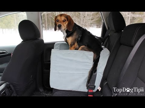 Snoozer Luxury Lookout Dog Car Seat Review 2018