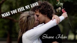 Gambar cover Make You Feel My Love Shane Filan (TRADUÇÃO) HD (Lyrics Video)