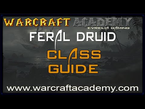 5.4 Feral Druid DPS Guide - Warcraft Academy