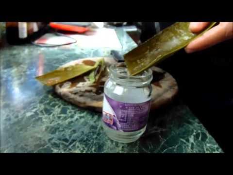 Μέρος 1 - Κρέμα προσώπου - Συγκομιδή ζελέ αλόης βέρα