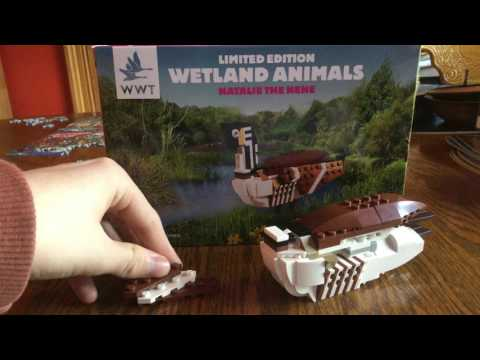 Lego limited edition set !!! natalie the nene bird bulid and review bought at castle espie