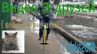 Видео 3 друзей #25 ( весна с кузнечиком )