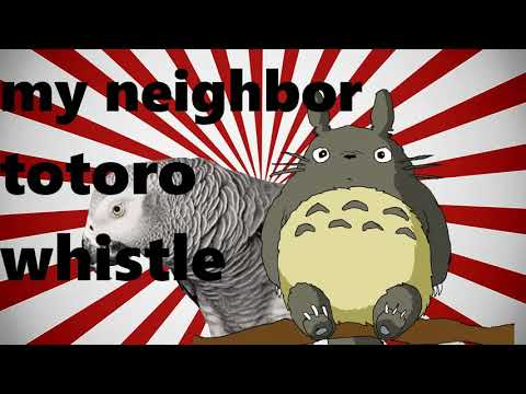 """MY NEIGHBOR TOTORO"" whistle training budgie and parrot teach learn training"