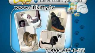 CitiKitty Cat Toilet Training Kit - COMMERCIAL