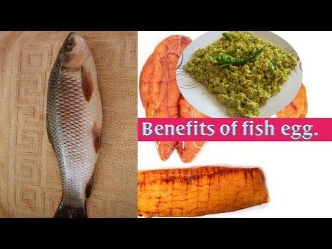 Health benefits of fish egg (in Hindi), मछली का अंडा