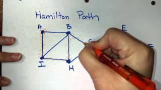 What is a Hamilton path?