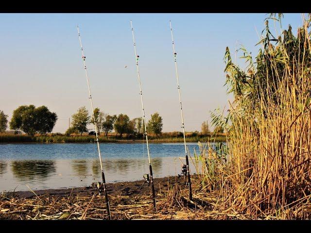 Рыбалка!!Кто ищет тот находит!!!КОРМАКИ выручают на РЕКЕ!!!Рыбалка с НОЧЁВКОЙ