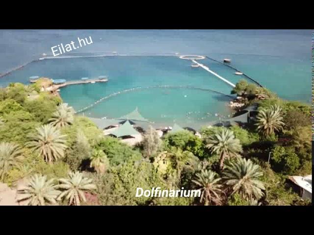 Izraelben nyaralás Eilati túrákkal.