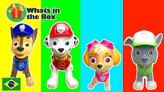 Paw Patrol Learn Colors Aprendendo Cores Patrulha Canina Portugues Inglês Surprise Toy Geleca