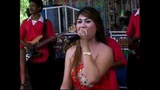 Video Janda Bodong - Maya Amelia - Nada Ayu Dangdut Pantura download MP3, 3GP, MP4, WEBM, AVI, FLV September 2017
