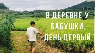КАК ЖИВУТ В КОРЕЙСКОЙ ГЛУБИНКЕ. Поездка в деревню к корейской бабушке/День первый