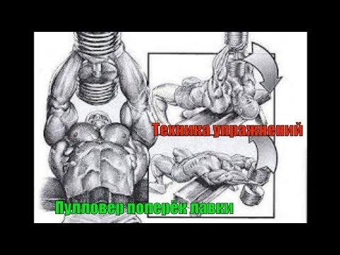 упражнения для расширения грудной клетки утепляющий