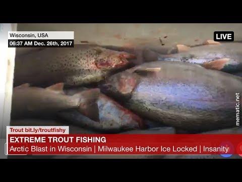 Extreme Trout Fishing - Arctic Blast - LyubakaVideo