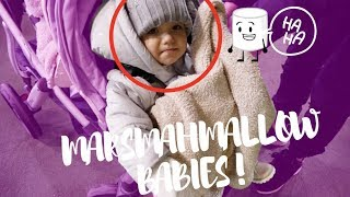 CHRISTMAS LIGHTS WITH MARSHMALLOW BABIES *CUTENESS OVERLOAD*