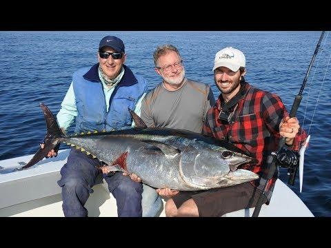 Vertical Jigging For Bluefin Tuna Off Cape Cod, MA