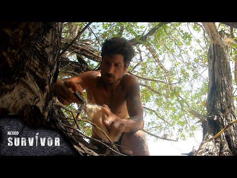 ¡Lalo Urbina encontró el tótem de inmunidad! | Survivor México