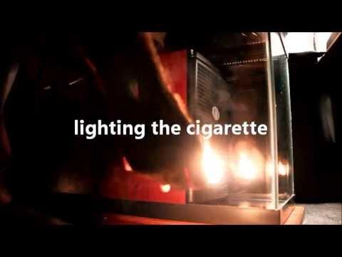 Rocky Mountain Air Smoke Air Purifier | Smoke eater | Air Purifiers for Allergies