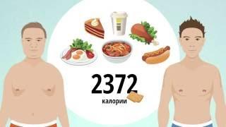 видео Правила здорового образа жизни