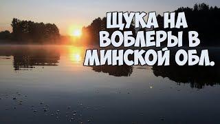 Ловля щуки в Минской области.  Рыбалка в Беларуси