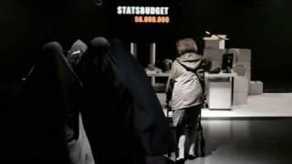 Sverigedemokraternas valfilm 2010