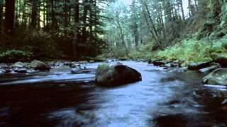Marcha Turca (de la Sonata en La Mayor) - Mozart (2002)