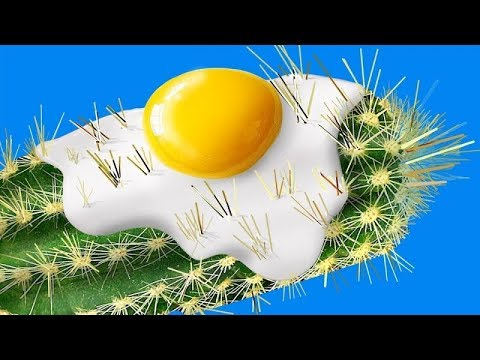 amazing-life-hacks-for-boys-/-5-minute-crafts-boys