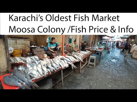 Fish Market Karachi / Oldest Fish Market Mossa Colony Fb Area / Fish Price And Info / Sea Food