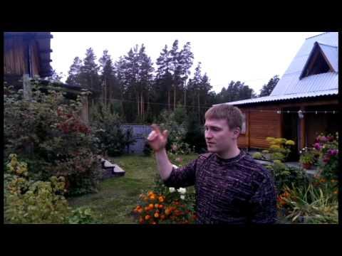 Rial Life in Siberia (beta)