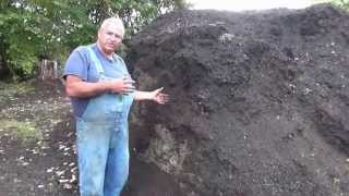 Best Potting Soil Recipe