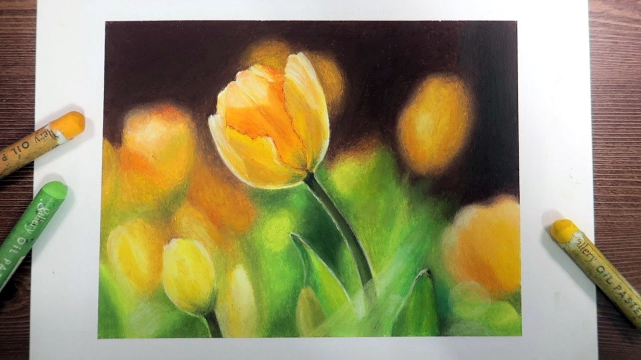 Yellow Tulip Oil Pastel Drawing by Ohu Sia