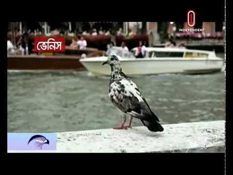 Choking Dhaka city's lifelines