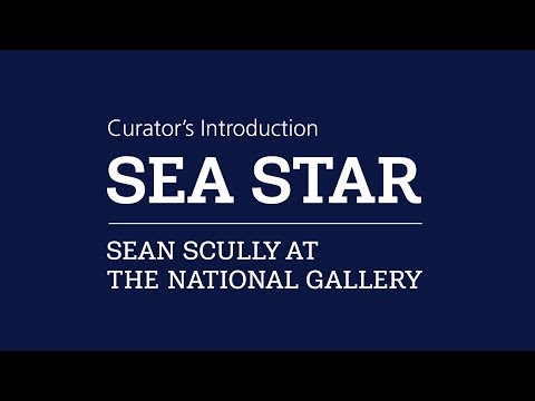 Curator's introduction | Sea Star: Sean Scully at the National Gallery
