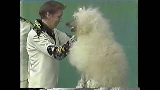 The Great Andre on WGN's Bozo's Circus 1976