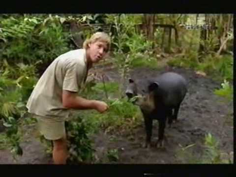 Crocodile Hunter - River Of The Dammed (Part 1/5)