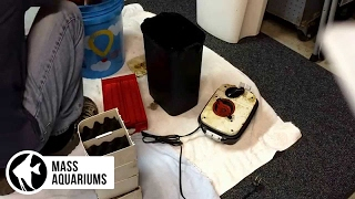 How to clean a canister filter: Fluval 406