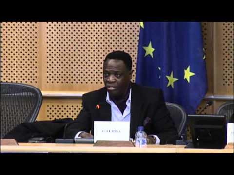 Restructuring Debt – Rebuilding Democracy - Cephas Lumina - European parliament - 1 march 2016