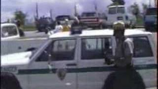 Bear breaks in car at Clingmans Dome, Smoky Mounts, TN..Cont