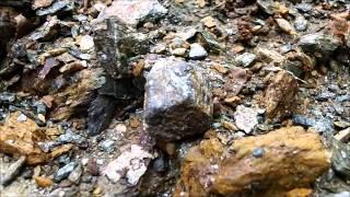 Little Pine Garnet Mine May 21, 2013