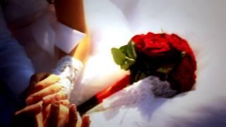 Свадебный ролик Андрей и Настя 2014 Новошахтинск