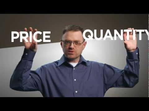 Supply - The Economic Lowdown Video Companion